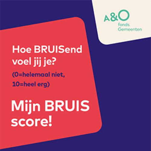 BRUIS top 5 kaart digitaal2 300
